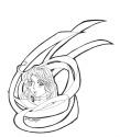A lovely Mihana amidst ribbons Ariake Mikazuki]